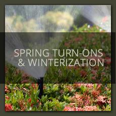 Spring Turn Ons
